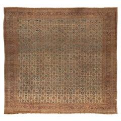 Large Square Persian Bakshaish Rug