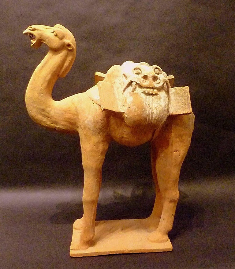 Chinese Large Superbly and Naturalistic Modeled Standing Camel, Tang Dynasty TL Tested For Sale