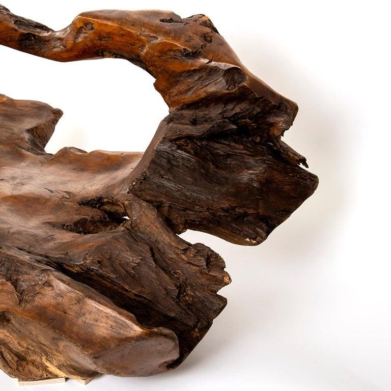 Contemporary Large Teak Wood Handled Vessel or Platter For Sale