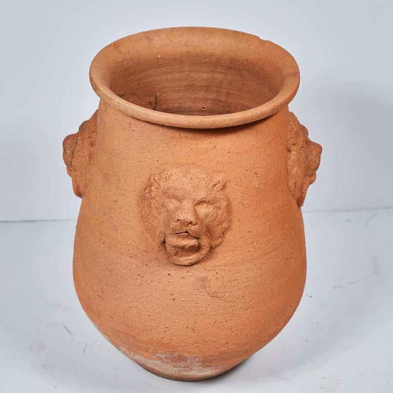 English Large Terracotta Garden Pot with Lion Engraving from Early 20th Century, England For Sale