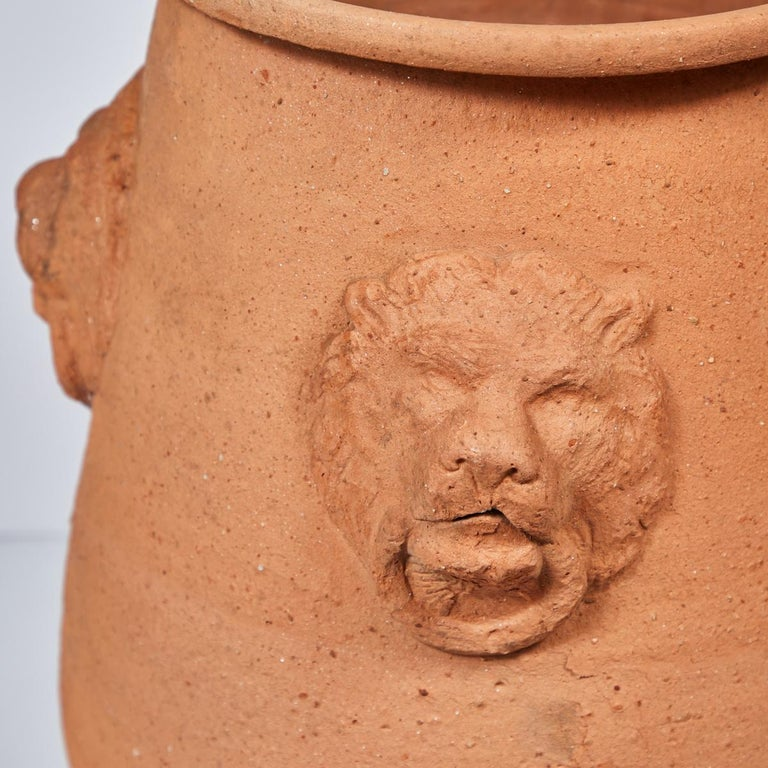Large Terracotta Garden Pot with Lion Engraving from Early 20th Century, England In Good Condition For Sale In Los Angeles, CA