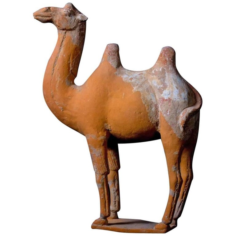 Large Terracotta Standing Camel, Tang Dynasty, China, 618-907 AD For Sale