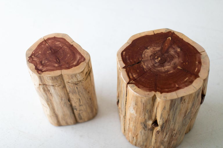 Large Tree Stump Side Tables, Natural For Sale 3