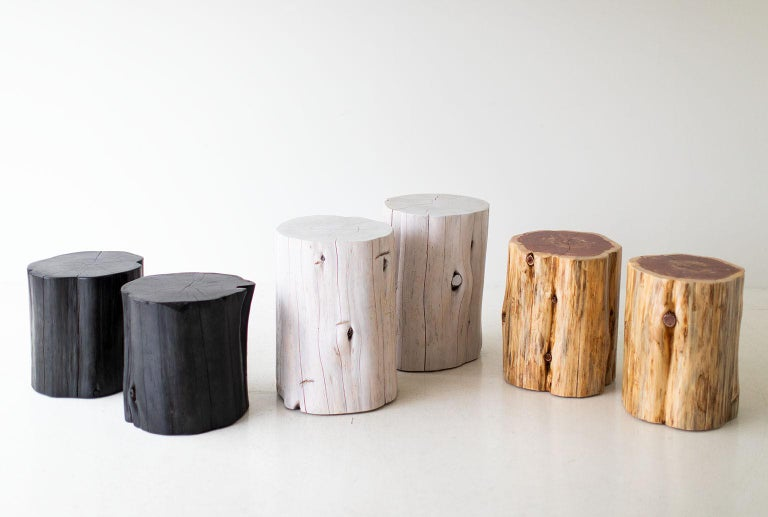 North American Large Tree Stump Side Tables, Natural For Sale