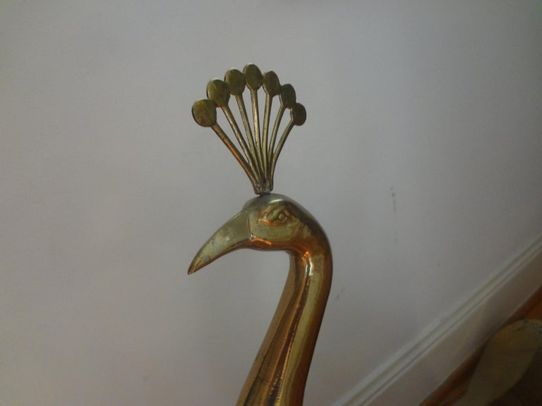 Large Hollywood Regency brass peacock statue or sculpture. This animal statue or sculpture would make a great addition to a Mid Century or Hollywood Regency interior.