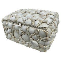 Large Hinged Box Encrusted with All White Natural Shells