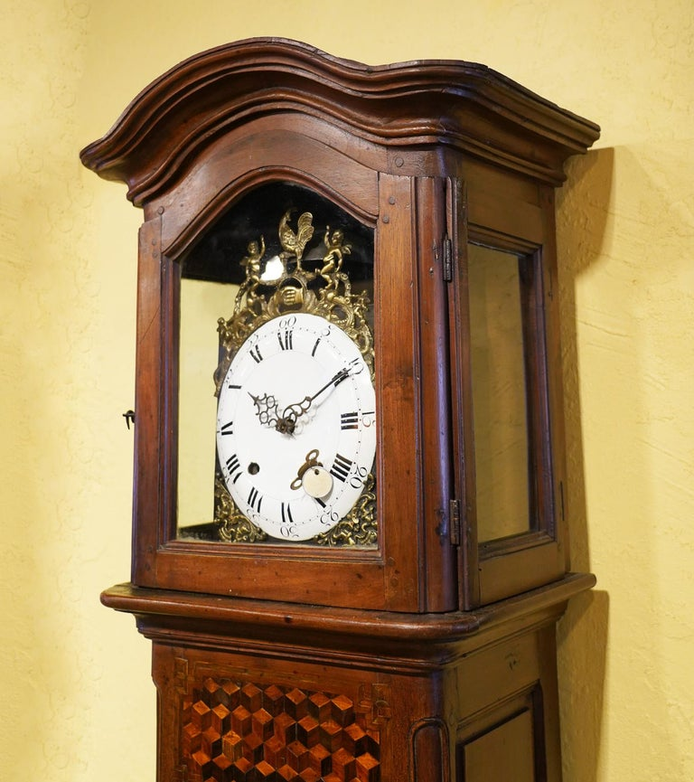 Late 18h Century French Provincial Walnut and Marquetry Tall Case Clock 4
