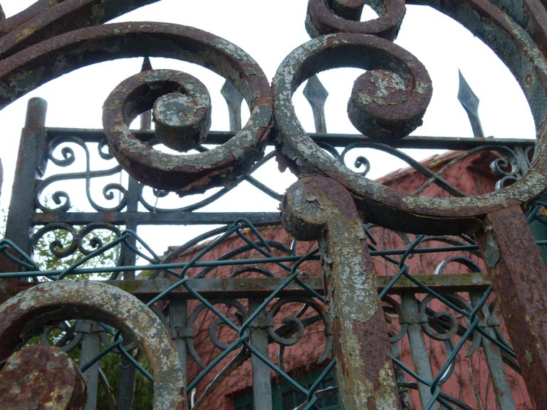 Late 18th Century Spanish Iron Gate For Sale 6