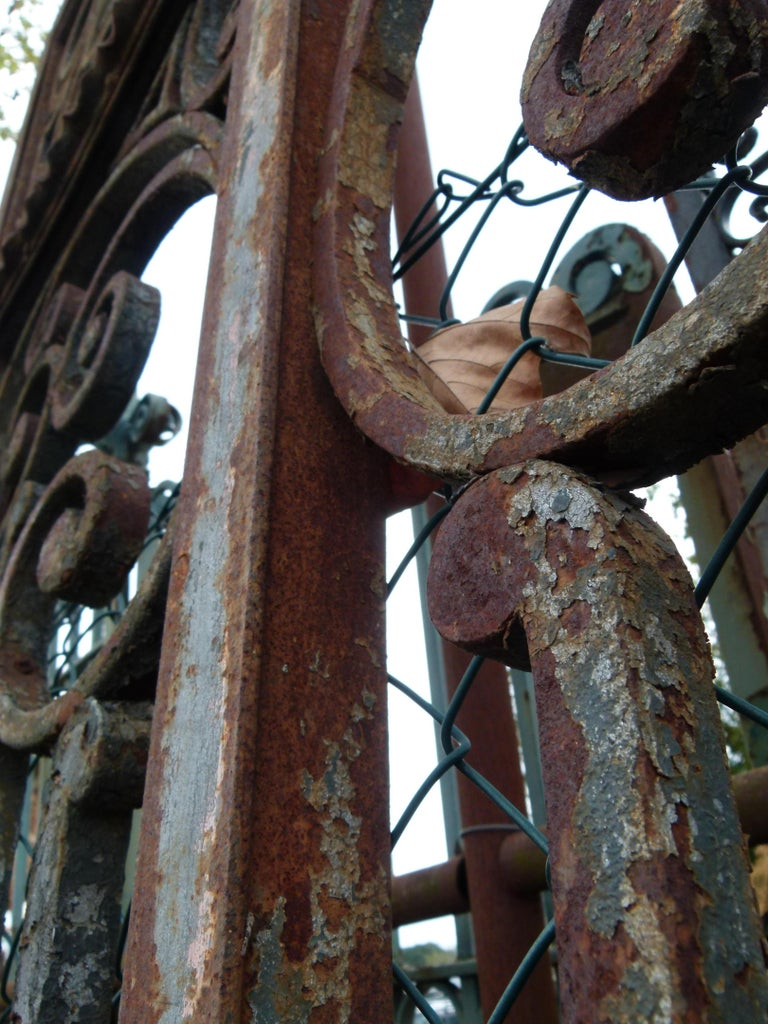 Late 18th Century Spanish Iron Gate For Sale 8