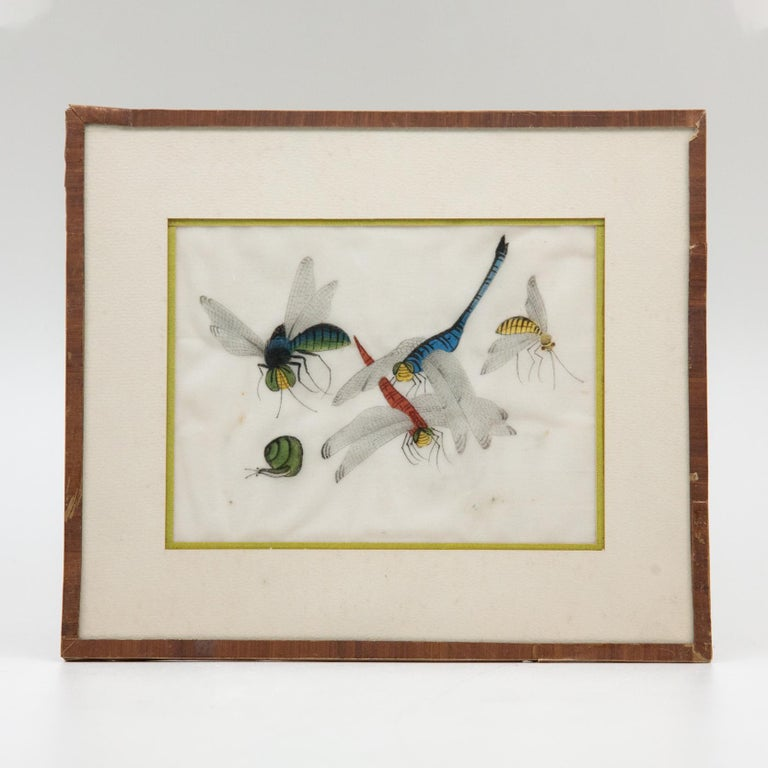 Late 19th Century Chinese Paintings of Insects on Rice Paper For Sale 7
