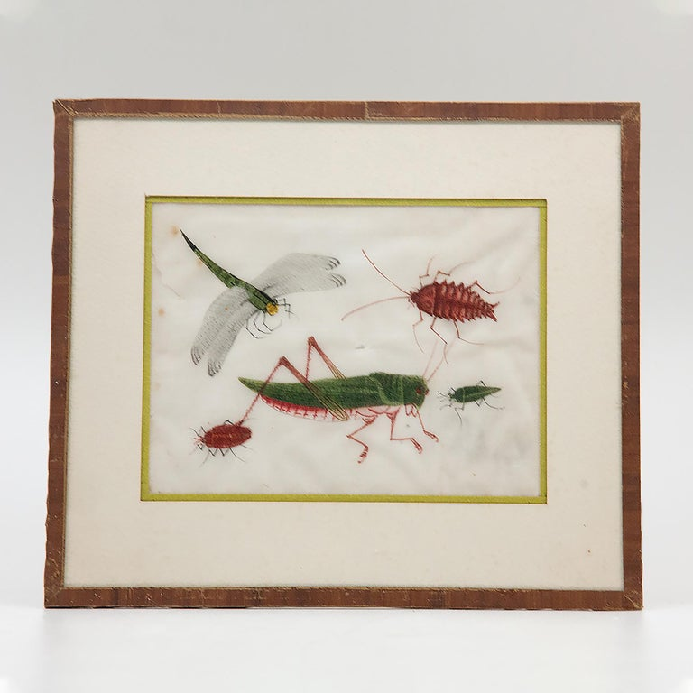 Late 19th Century Chinese Paintings of Insects on Rice Paper For Sale 9