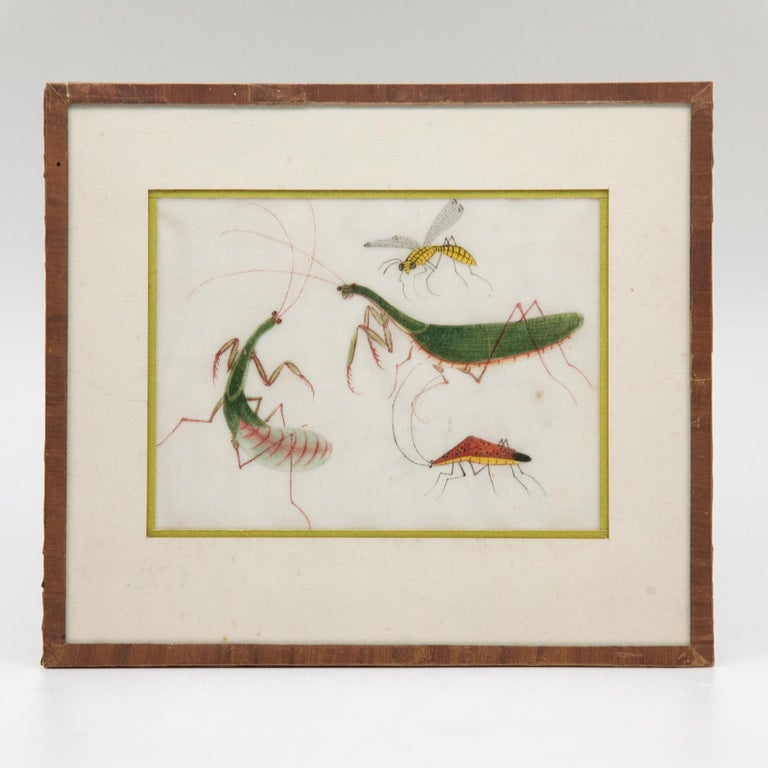 Late 19th Century Chinese Paintings of Insects on Rice Paper For Sale 3