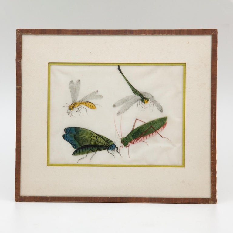 Late 19th Century Chinese Paintings of Insects on Rice Paper For Sale 4
