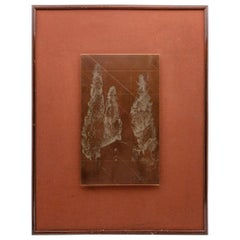 Late 19th Century Framed Copper Etching Plate of Trees and Goats
