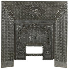 Late 19th Century French Iron Fireplace Surround Insert with Double Faced Doors