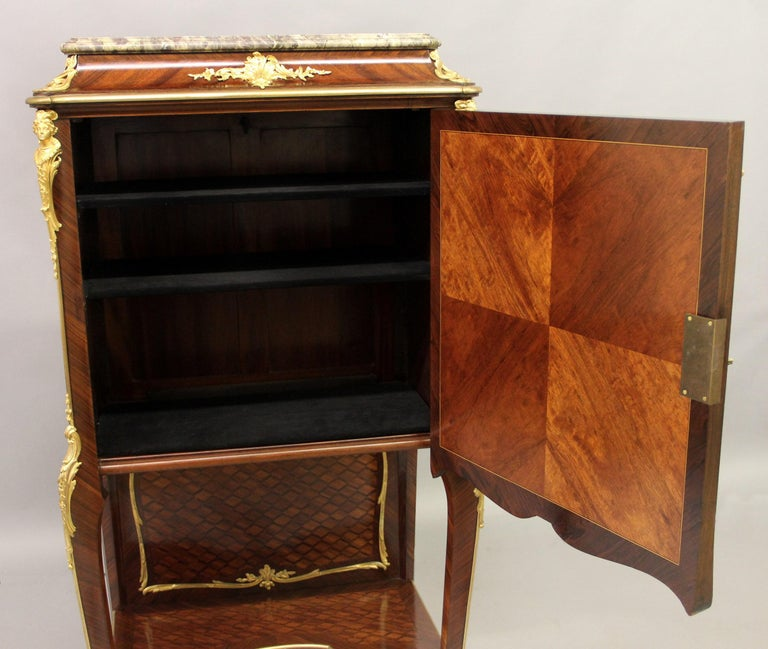 Late 19th Century Gilt Bronze Mounted Marquetry Cabinet by François Linke For Sale 1