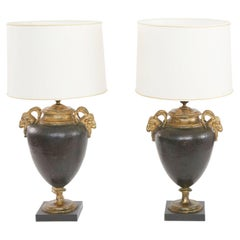Late 19th Century Patinated / Gilt Metal Pair Lamp