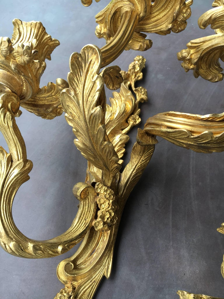 Rococo Late 19th Early 20th Century French Louis XV Style Gilt Bronze Sconces For Sale