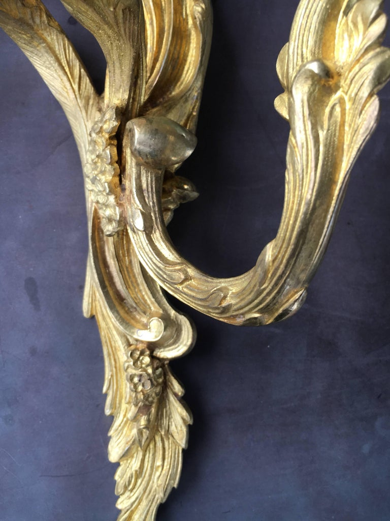 19th Century Late 19th Early 20th Century French Louis XV Style Gilt Bronze Sconces For Sale