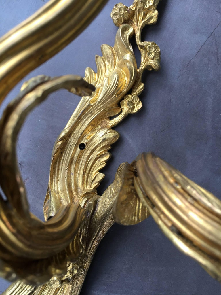 Late 19th Early 20th Century French Louis XV Style Gilt Bronze Sconces For Sale 2