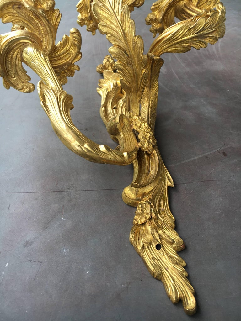 Late 19th Early 20th Century French Louis XV Style Gilt Bronze Sconces For Sale 3