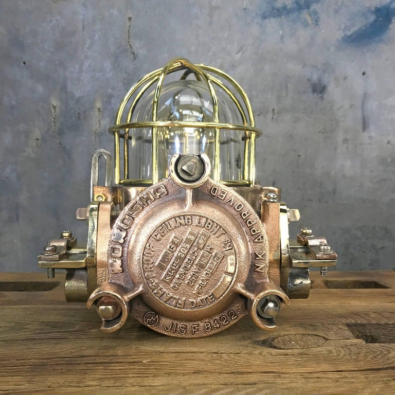 Late Century Flame Proof Cast Bronze Ceiling / Wall Light, Glass Dome Brass Cage For Sale 11
