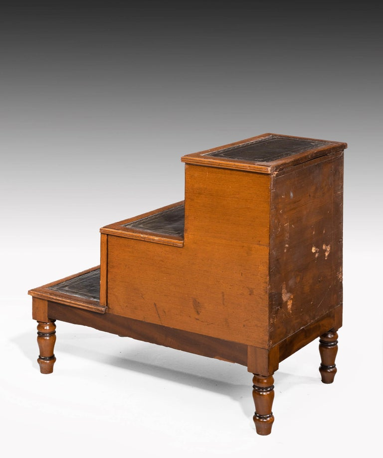 Late George III Period Bed Step Commode In Good Condition For Sale In Peterborough, Northamptonshire