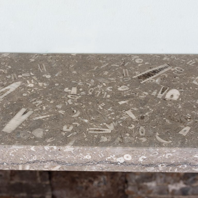 Late 19th Century Derbyshire Fossil Limestone Fireplace For Sale 9