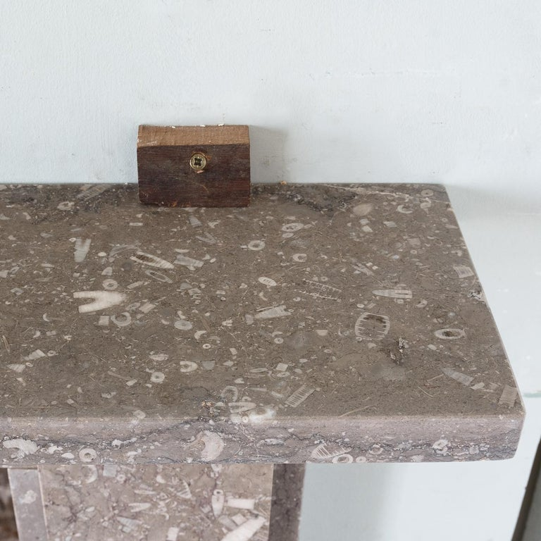 Late 19th Century Derbyshire Fossil Limestone Fireplace For Sale 10