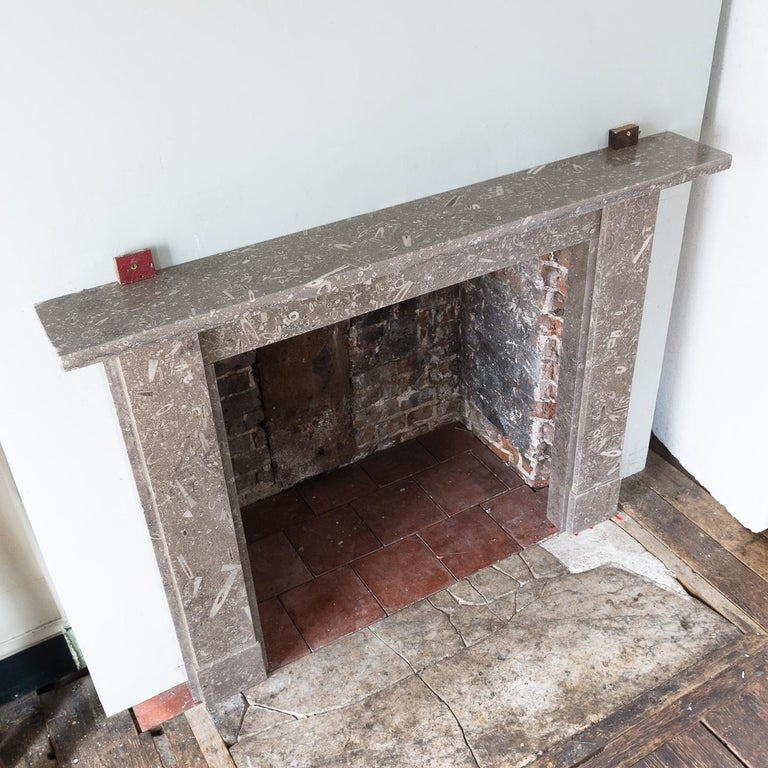 Late 19th Century Derbyshire Fossil Limestone Fireplace For Sale 11