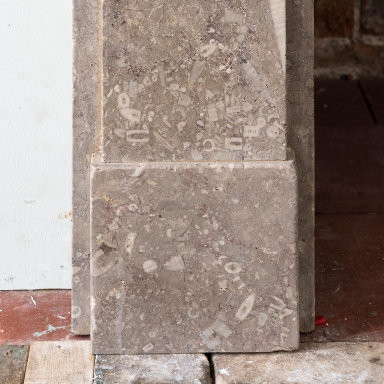 Late Victorian Late 19th Century Derbyshire Fossil Limestone Fireplace For Sale