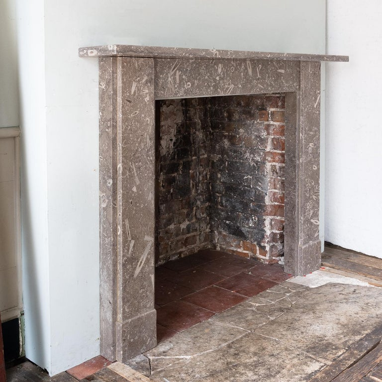 Late 19th Century Derbyshire Fossil Limestone Fireplace In Good Condition For Sale In London, GB