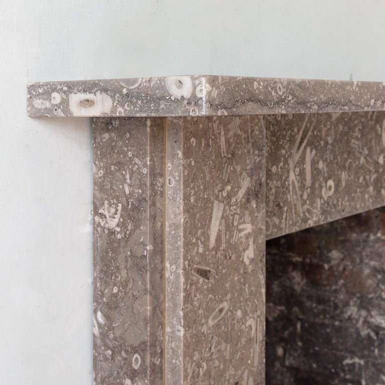 Late 19th Century Derbyshire Fossil Limestone Fireplace For Sale 1