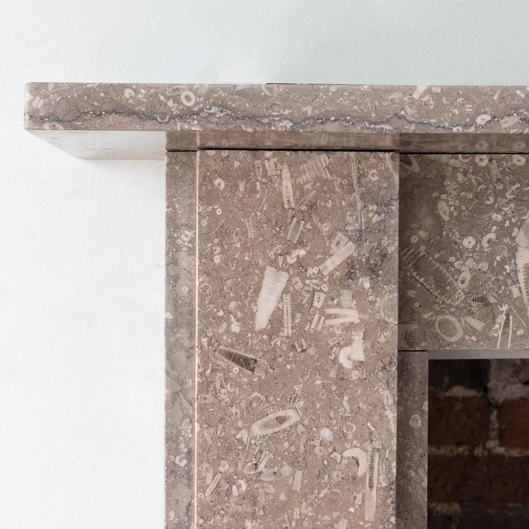 Late 19th Century Derbyshire Fossil Limestone Fireplace For Sale 2