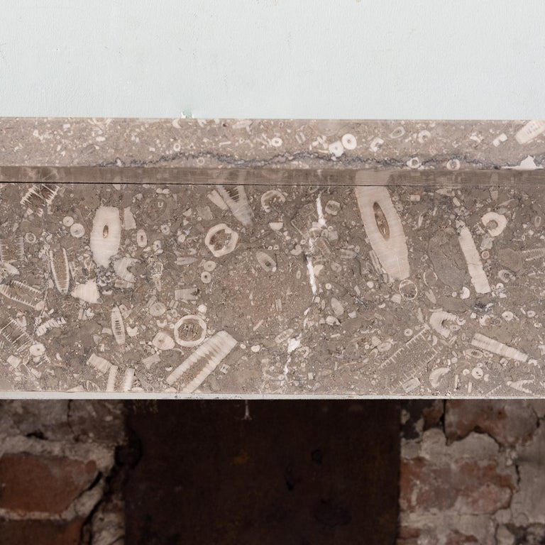 Late 19th Century Derbyshire Fossil Limestone Fireplace For Sale 3