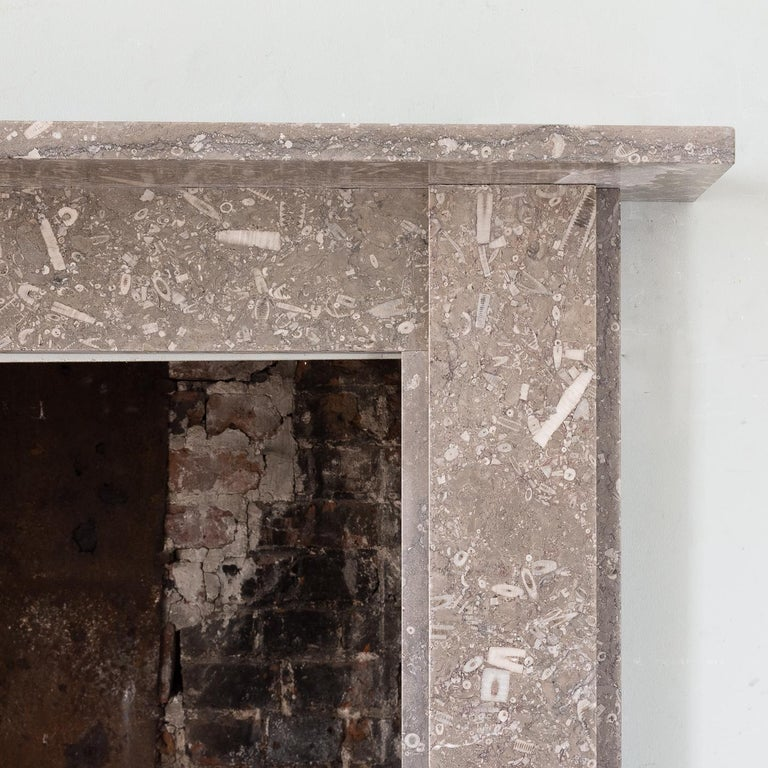 Late 19th Century Derbyshire Fossil Limestone Fireplace For Sale 4