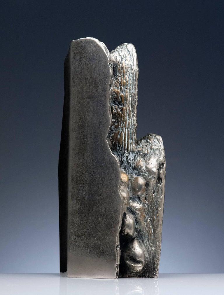 Latin American Raúl Valdivieso Organic Abstract Bronze Metal Sculpture For Sale 1