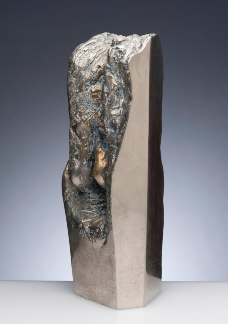 Latin American Raúl Valdivieso Organic Abstract Bronze Metal Sculpture For Sale 2