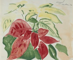 Mendocino Poinsettias, Watercolor Painting, 1972