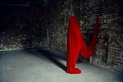 Contemporary Photography: Transhumance III