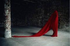 Contemporary Photography: Transhumance IV