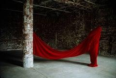 Contemporary Photography: Transhumance V