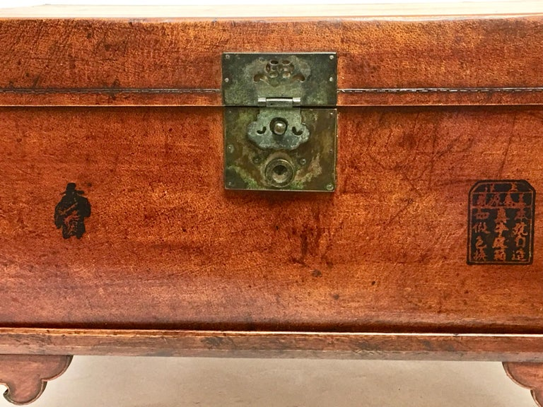 Brass Leather Pig Skin Trunk on Stand Coffee Table For Sale