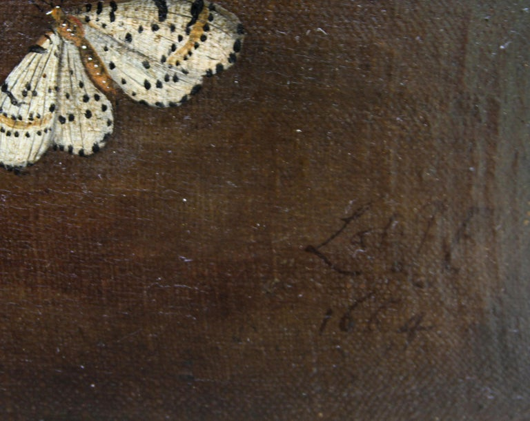 Still Life Arrangement - Dutch Old Master 17thC art oil painting fruit butterfly For Sale 5