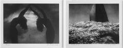 Diptych: Reigen (Roundelay) and or Dau Wind/Vor Dem Wind (Before the Wind),