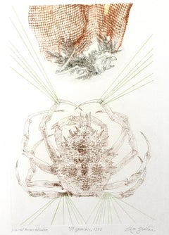 The Crab - Original Etching by Leo Guida - 1973