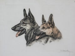 German Shepard Heads original engraving  by Leon Danchin