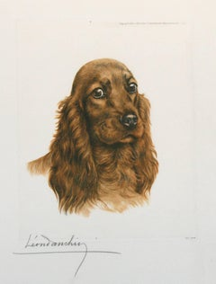 Red Cocker Spaniel Head Leon Danchin original etching