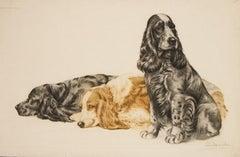 Three Cocker Spaniels original etching by Leon Danchin