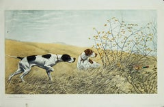 Two Pointers Hunting a Pheasant original etching by Leon Danchin 1938